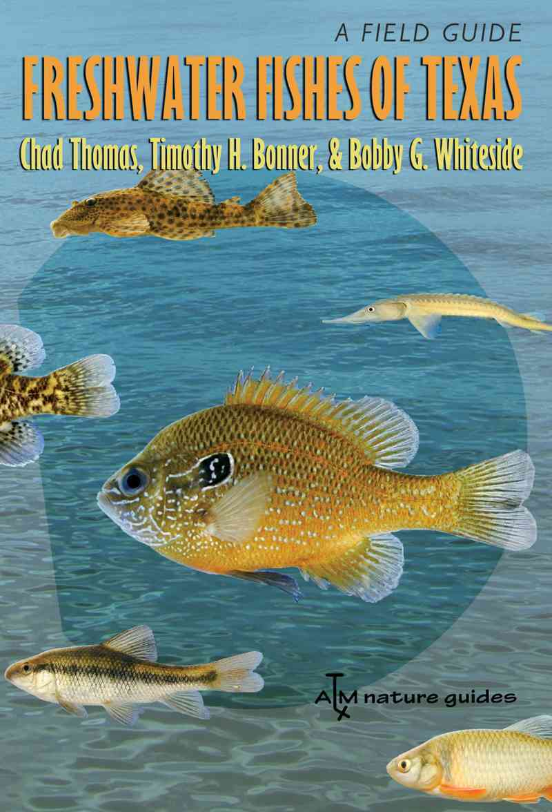 Freshwater Fishes of Texas By Thomas, Chad/ Bonner, Timothy H./ Whiteside, Bobby G./ Gelwick, Fran (FRW)